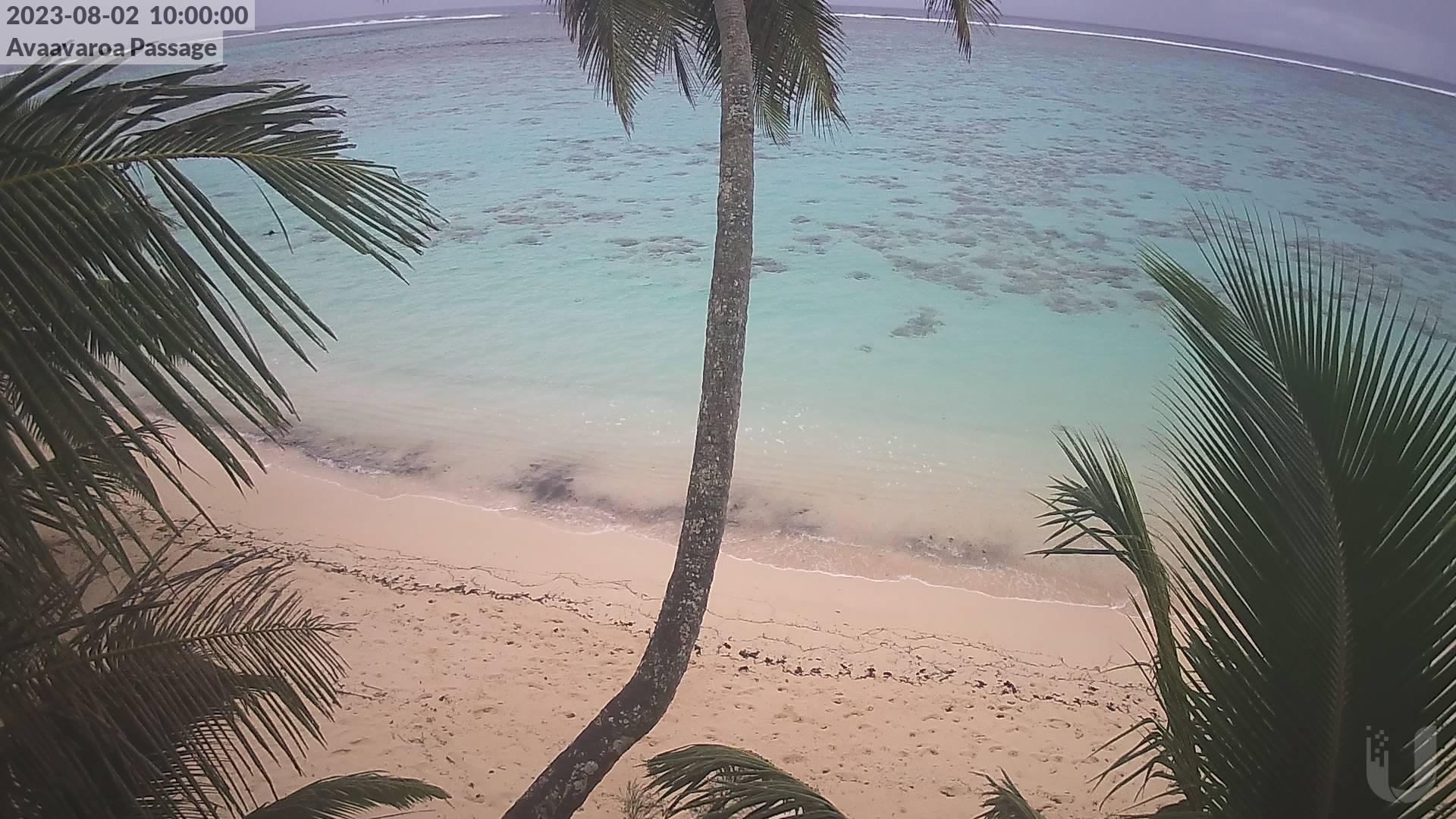 10:00 AM @ Avaavaroa Beach